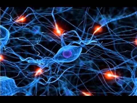 Ovlivňování buněk těla - je možné si nechat dorůst končetiny ? (Abraham Hicks)