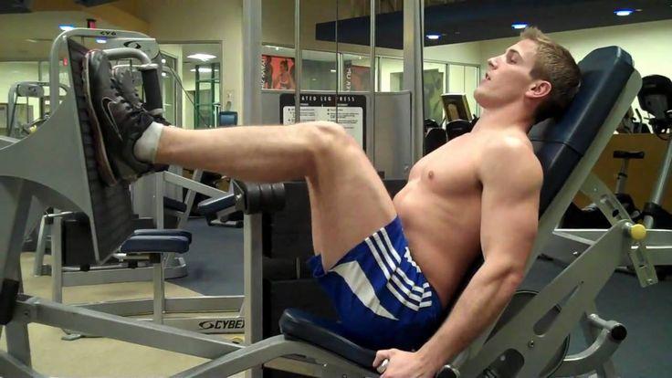 LEG PRESS  How To: Seated Leg Press (Cybex)