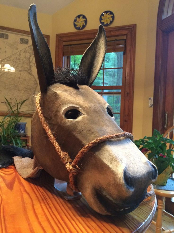 This is the Donkey head/mask that I created using cardboard and paper mache with a burlap forelock and mane. The head was attached to a bicycle helmet. The Donkey halter with a single rein was created with a hemp rope.
