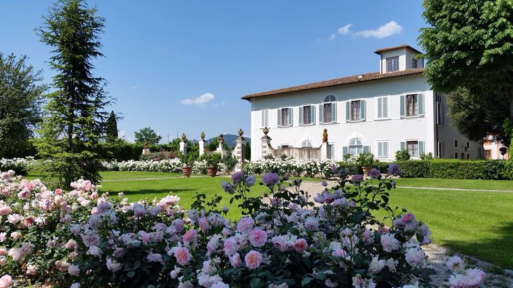 Villa olmi and roses
