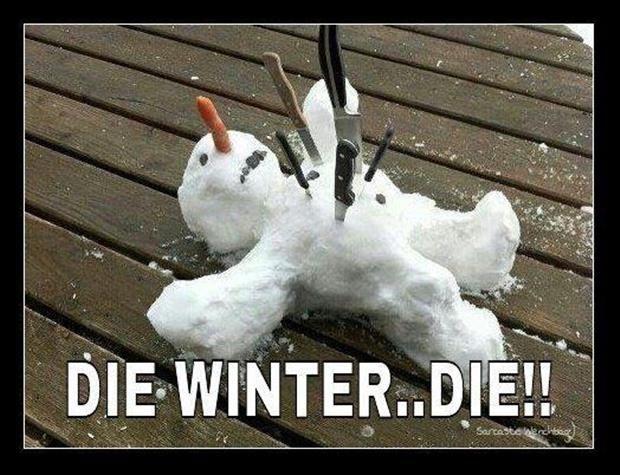 die winter funny dead snowman