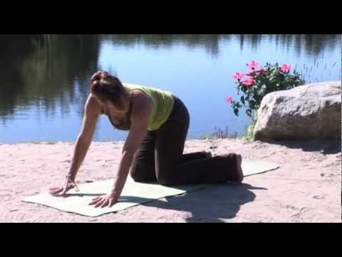 Exercice thérapeutique - Nerf sciatique - Lisa McLellan - YouTube