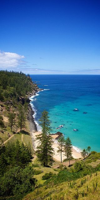 Norfolk Island, Australia - I never knew you could find pine trees next to the beach in Australia! Gorgeous!