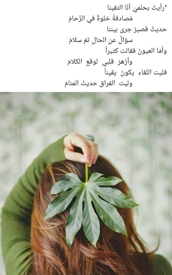 Pin By Amal On Proverbes Arabic Quotes Herbs
