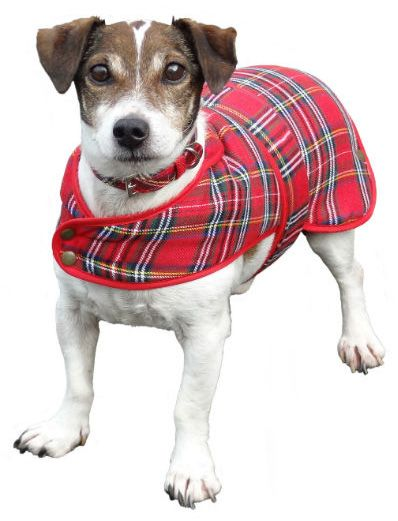 Tartan dog coat.  Available in Black Watch and Royal Stewart in Small (30cm - suitable for Jack Russell or similar breed) and Medium (40cm - suitable for West Highland Terrier or similar breed).  Shower-proof, machine-washable Poly Viscose outer with fleece lining.