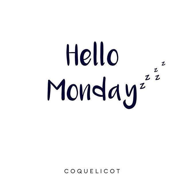 Coquelicot Quotes   Hello Monday 💤