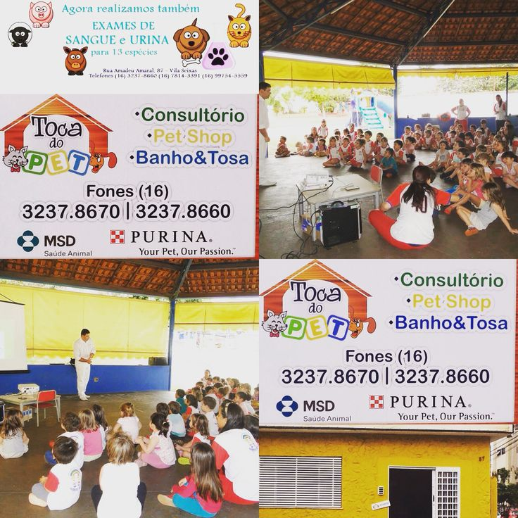 https://www.facebook.com/webpuppiesbrazil/posts/1673660262881294  Consultório bem estruturado e equipado com atendimento diferenciado, assistência médica veterinária moderna, ética e competente.  Endereço:  Rua Amadeu Amaral, 87 - Vila Seixas Ribeirão Preto - SP 14020-050 Fixo: (16) 3237-8660 / 3237-8670 Móvel: (16) 7814-3391 / 99754-5559 #ribs #ribeiraopreto #saopaulo #orlandia #oscarfreiresp #sertaozinho #cravinhos #petshop #serrana #shoppingiguatemi #love #limeira #pirassununga #saosimao…
