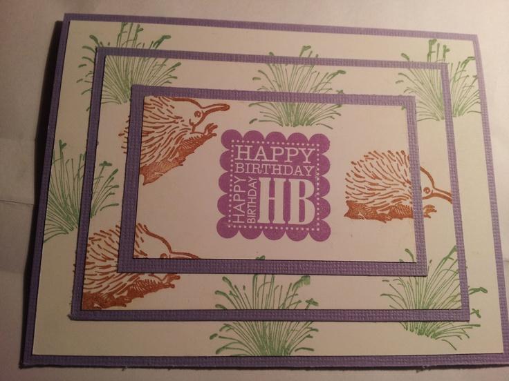 Triple time stamping card - echidna