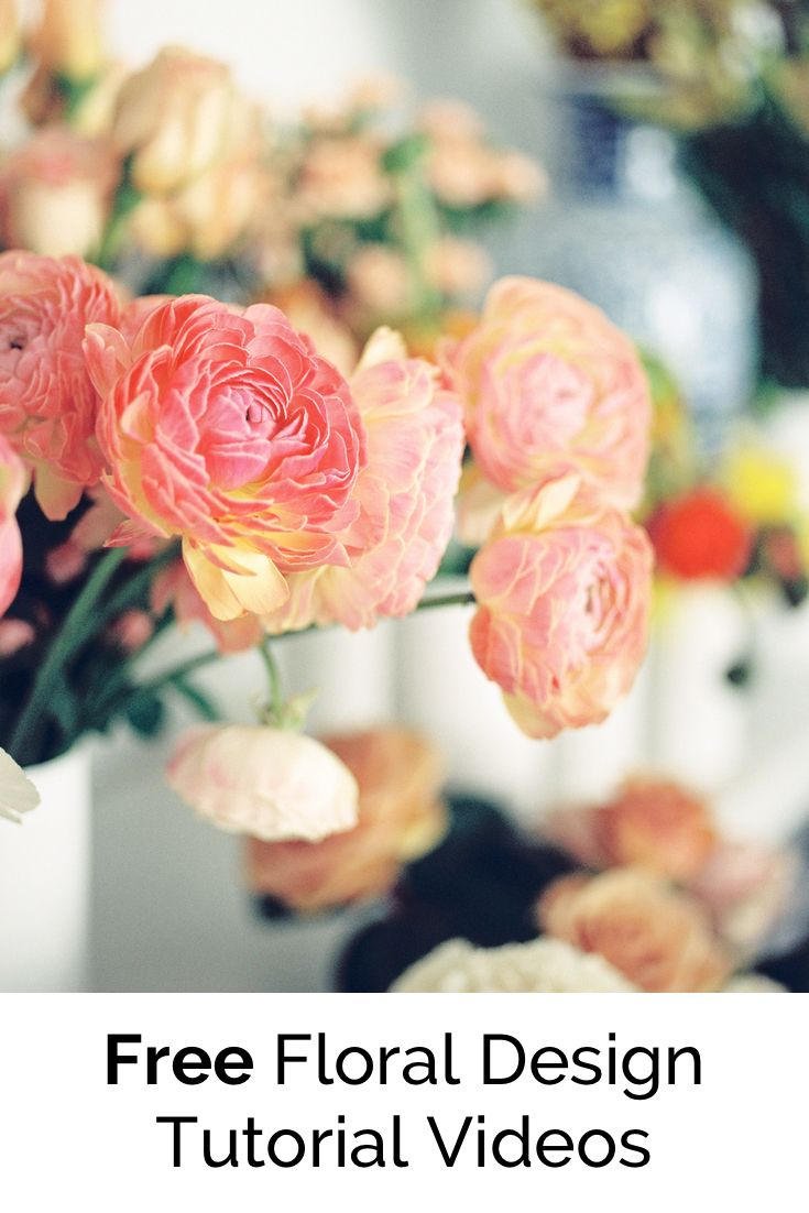 Check out this free Centerpiece timelapse video from Team Flower!