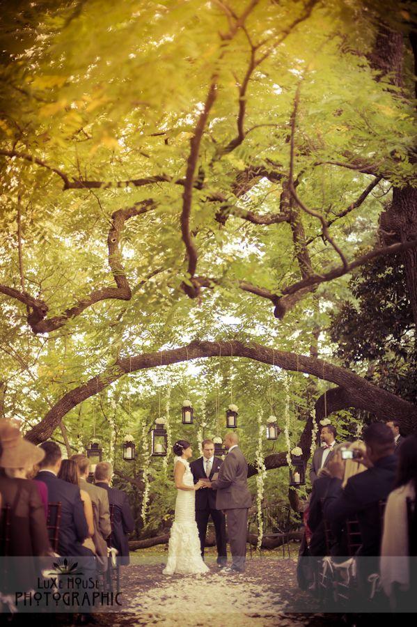 Best 25 Tree wedding ceremonies ideas on Pinterest  Wedding under trees Outdoor wedding