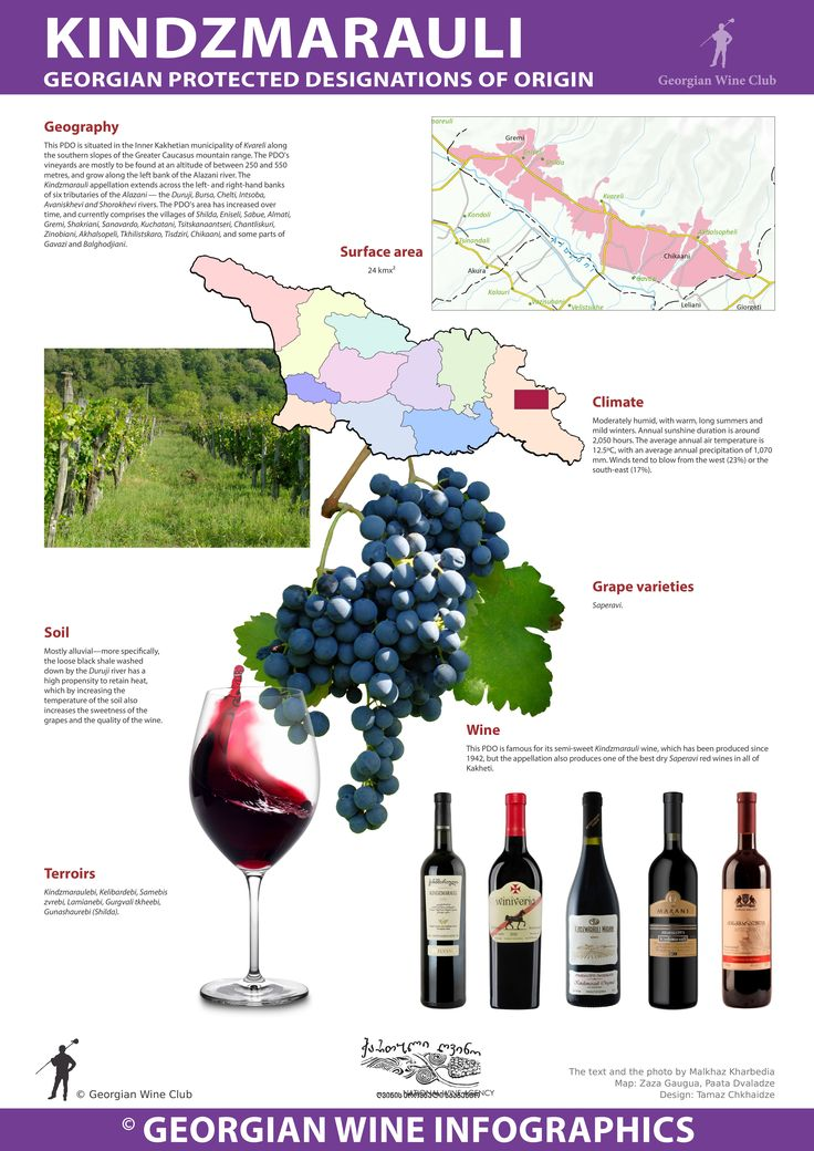 Kindzmarauli - Georgian Wine Infographics (30) Marani