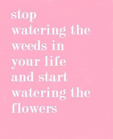Start watering the flowers