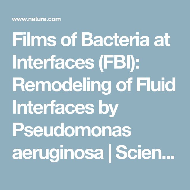 Films of Bacteria at Interfaces (FBI): Remodeling of Fluid Interfaces by Pseudomonas aeruginosa | Scientific Reports