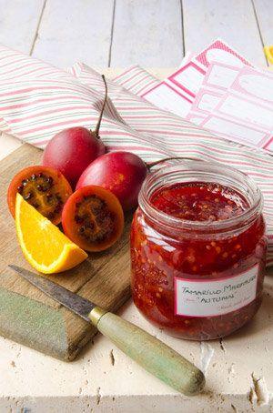 Tamarillo And Orange Marmalade Recipe | Allyson Gofton
