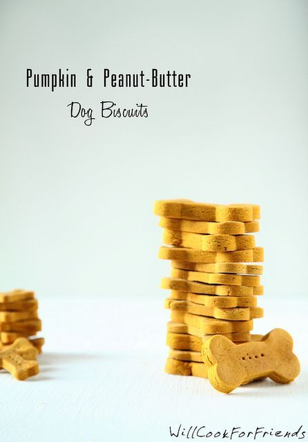 Pumpkin & Peanut Butter Dog Biscuits - tummy friendly treats by WillCookForFriends, via Flickr