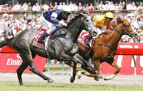 Efficient wins Melbourne Cup 2007