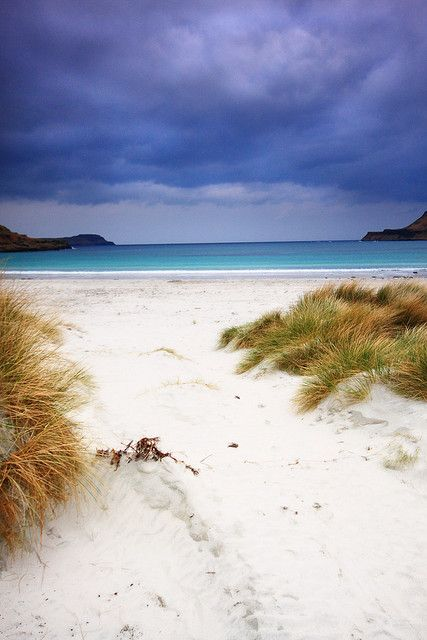 Calgary Bay, Isle Of Mull, Scotland (by Paddy McDougall, via Flickr)