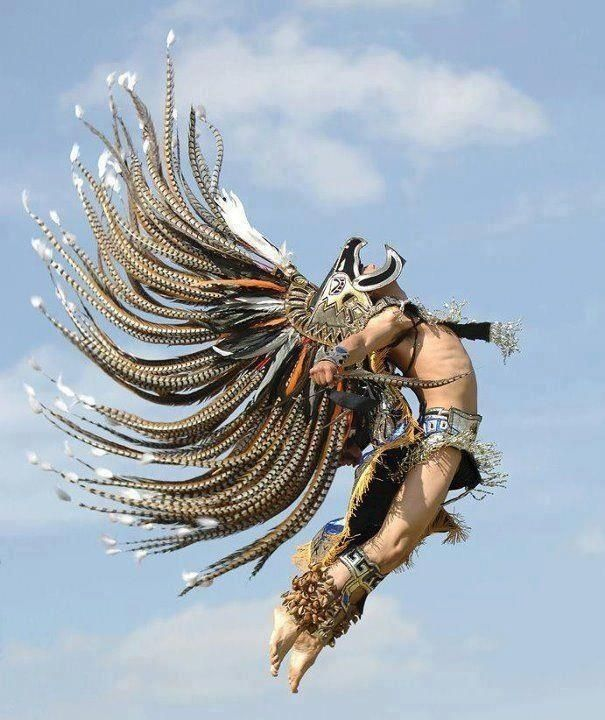 An Aztec in flight! !¡Me desborda! ¡La majestad!
