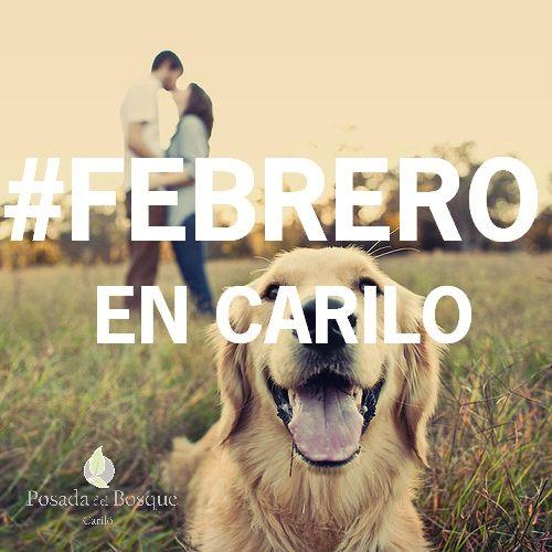 LAS VACACIONES CONTINÚAN EN FEBRERO!. TE ESTAMOS ESPERANDO!. #febrero #carilo #posadasdelbosque #amocarilo