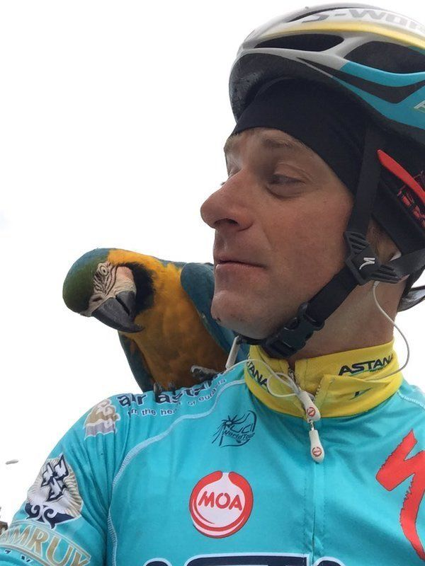 Rest In Peace, Michele Scarponi (with Frankje, a wild Blue and Yellow macaw that befriended him on training rides near his home in Italy).