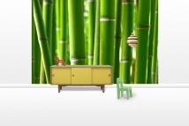 Zen Bamboo - Fototapeter - Photowall