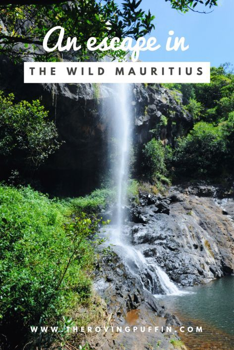 The Seven Cascades - an escape in the wild Mauritius | The roving puffin