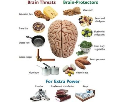 Reduce your risk of Alzheimer's disease and reverse memory loss by getting Dr. Oz's tips on brain protection foods and activities! http://www.examiner.com/article/dr-oz-and-neal-barnard-prevent-and-reverse-alzheimer-s-with-brain-foods