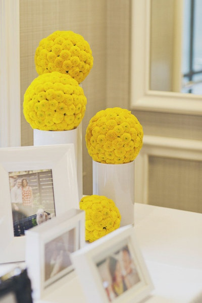 Topiarios pinoquios amarillos