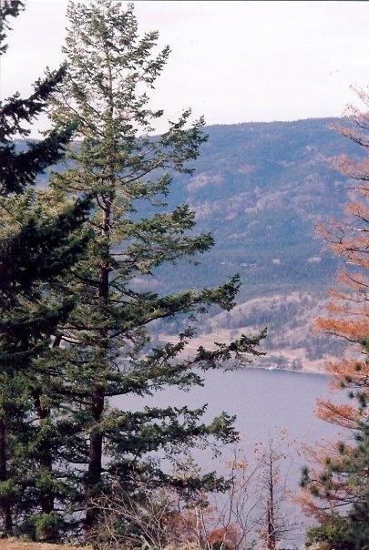 Scenery in Kelowna, Canada -- Curated by: Nicola's Laser Studio| #102-1289 Ellis Street Kelowna BC V1Y 9X6   | 2508625152
