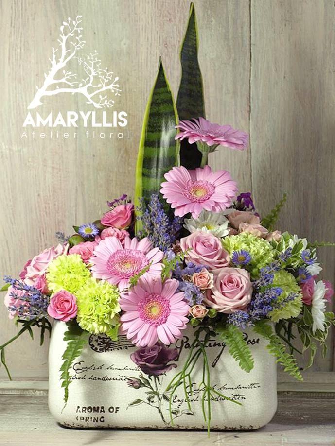 aranjament floral#amaryllis