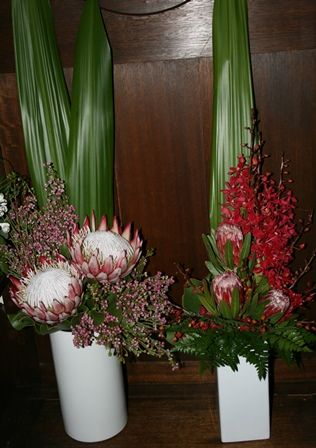 Bloomin Boxes :: King Proteas