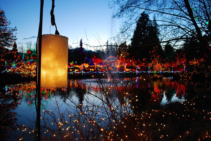 Van Dusen Botanical Garden, Vancouver l Bright Nights at Van Dusen at Christmas is one of my favorite traditions