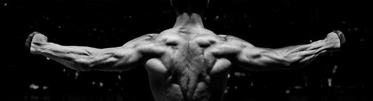 Fitness Fotografie von einem muskulösen Rücken mit Personal Trainer Sam Bürsner