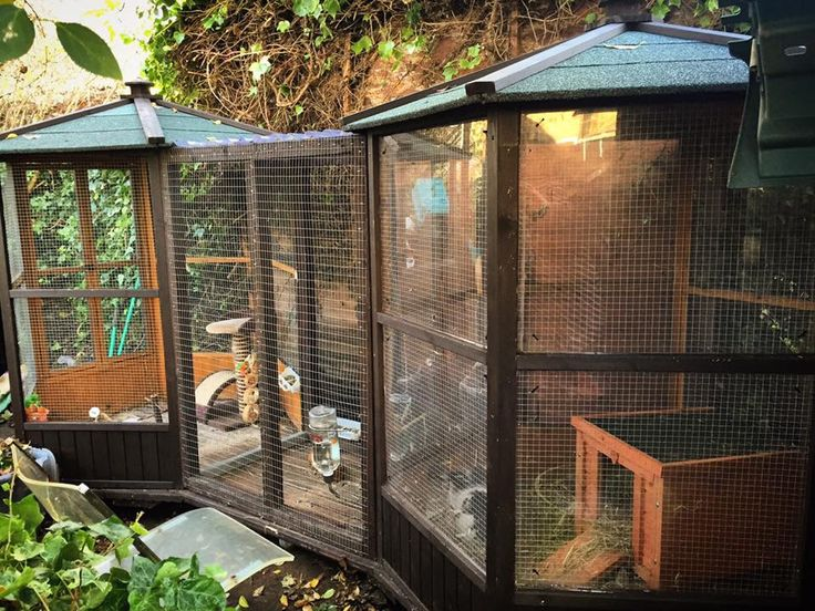 Grand outdoor bun enclosure with partial plexiglass lining inside to keep out wind/elements. whole thing on wheels so can be moved around yard. Houses 2 bunnies (UK)