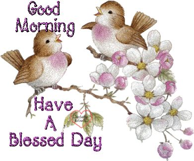 Good morning. Have a Blessed Day.