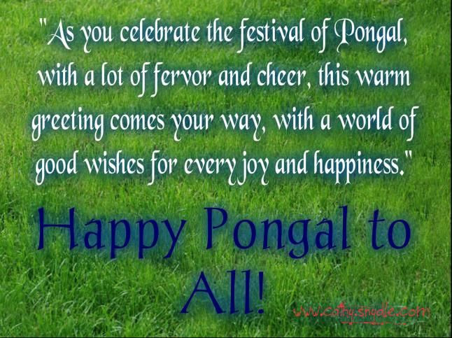 11 best pongal greetings wishes and pongal messages images on pongal greetings wishes and pongal messages m4hsunfo