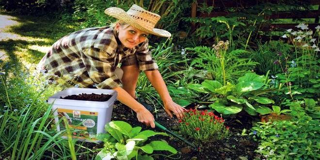 """Yaz aylarında bahçe bakımında dikkat etmemiz gereken olmazsa olmazları biliyor muydunuz? Bakım isteyen yaşam alanımız bahçelerimiz hakkında birkaç ipucu bulmak için önerilerimizi okumanız yeterli… Dünyanın lider tesis yönetim şirketi ISS'in grup şirketlerinden """"ISS Haşere Kontrol ve Bitki Bakım Hizmetleri"""" konu ile ilgili neler yapılmasını gerektiğini sizler için paylaştı. Yaz aylarında önceliğimiz havaların ısınması ile toprak ..."""