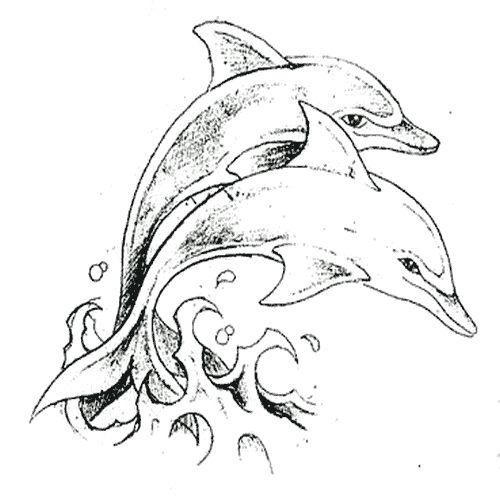 дельфины   Тату с дельфинами, Дельфины, Искусство дельфинов