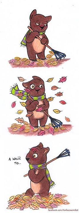 torbacz.wombat@gmail.com liście liście... Torbacz Wombat