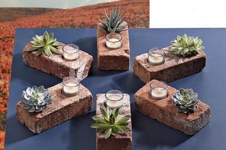 Come coltivare le piante grasse sui mattoni