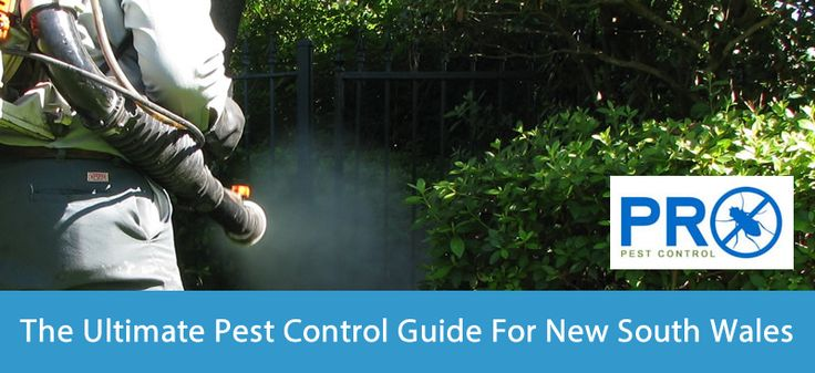 http://pdfsr.com/pdf/the-ultimate-pest-control-guide-for-new-south-wales.pdf