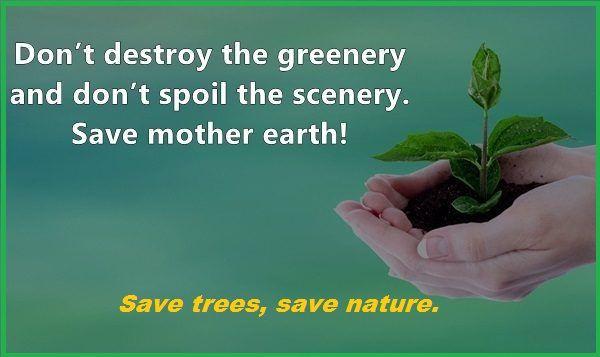 Slogan On Trees