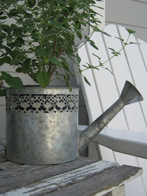 still life with zinc watering can