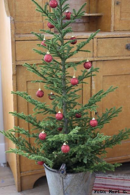 Pure and simple: Charli Brown Christmas, Buckets, White Lights, Primitive Christmas, Christmas Trees Decor, Country Christmas, Christmas Front Porches, Christmas Decor, Rustic Christmas