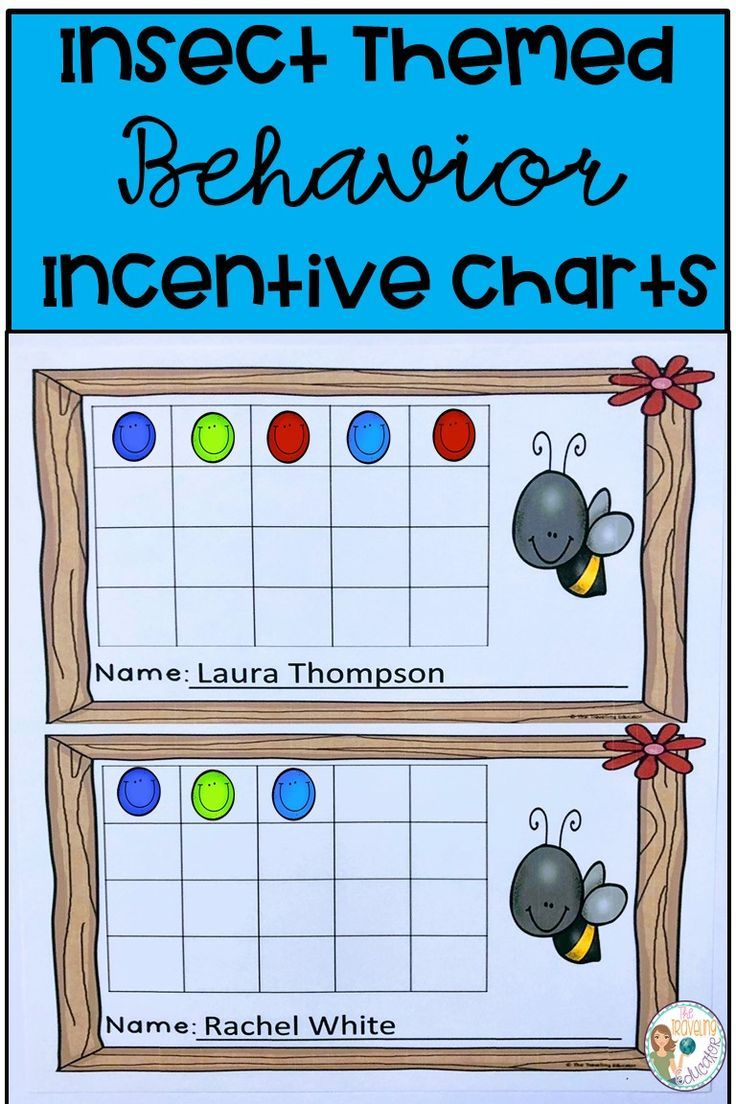 Incentive Charts with an Insect Theme   All Elementary @TpT