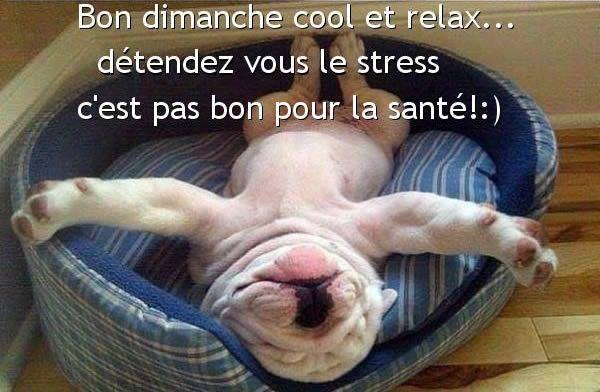 Bon dimanche cool et relax... détendez vous le stress c'est pas bon pour la santé!