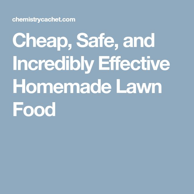 Cheap, Safe, and Incredibly Effective Homemade Lawn Food