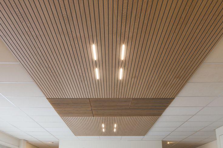 Bamboo Acoustics