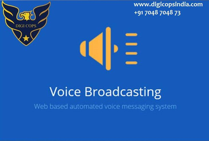 Digicopsindia Affordable Voice Broadcasting Service Customer Engagement Customer Demographics Broadcast