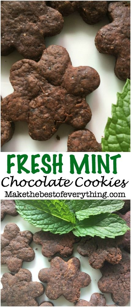Fresh Mint Chocolate Cookies.  Use mint from your herb garden.  tastes so much better than mint extract!